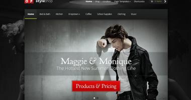 wordpress_ecommerce_theme_WDR_feature_image